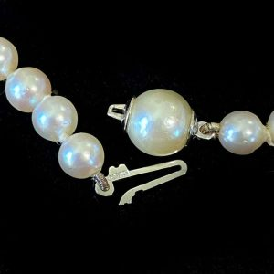 Classic, Cultured Saltwater Pearl necklace on Silver and Pearl clasp